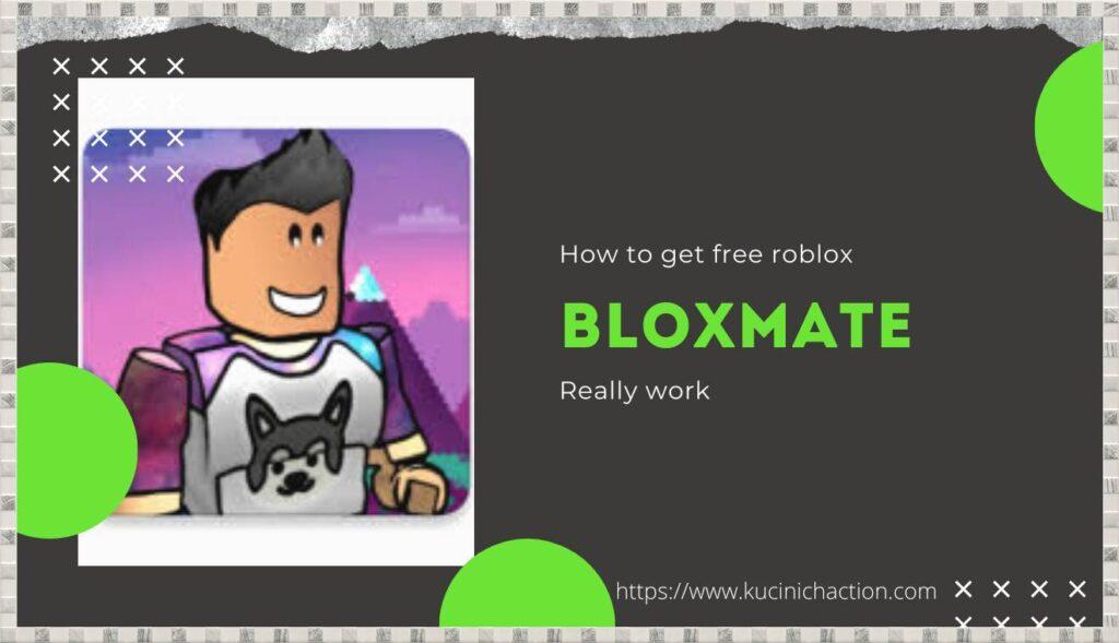 BLOXMATE
