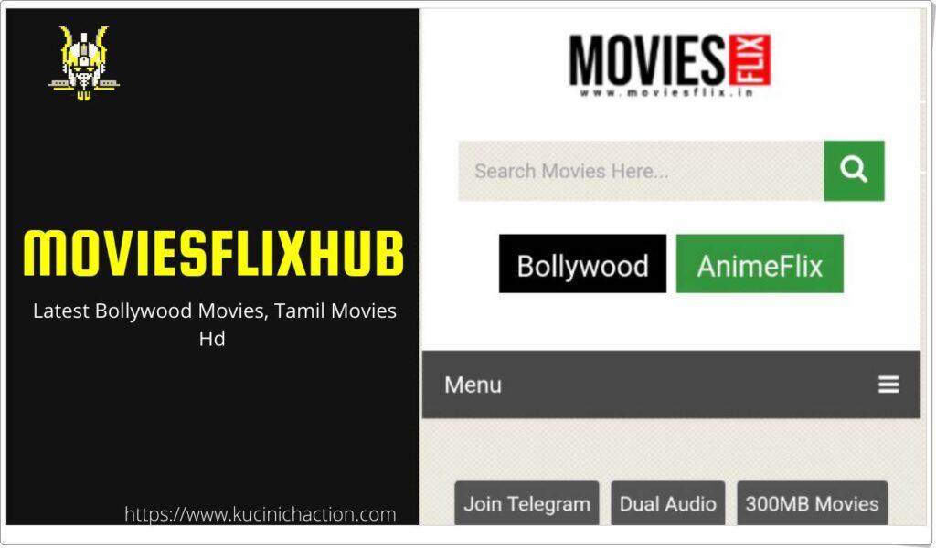 MoviesFlixHub